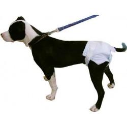 Pañales Para Perros M