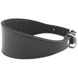 Collar Perro Galgo y Lebrel Negro Talla 35