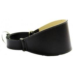 Collar Perro Galgo Martingale Negro Talla 40