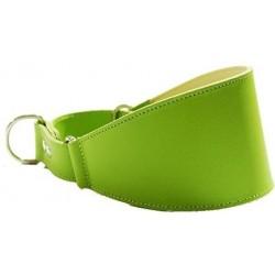 Collar Perro Galgo Martingale Verde Talla 40