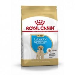 Royal Canin Pienso Perro Labrador Retriever Junior 12kg