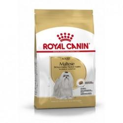 Royal Canin Pienso Perro Maltés Adulto 500gr