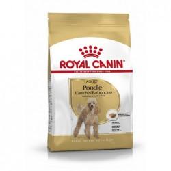 Royal Canin Pienso Perro Caniche Adulto 1