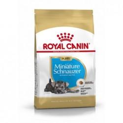 Royal Canin Pienso Perro Schnauzer Junior 1