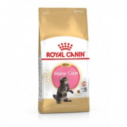 Royal Canin Pienso Gato Kitten Maine Coon 10kg
