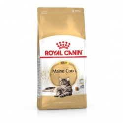 Royal Canin Pienso Gato Maine Coon 10kg | SuperPiensos