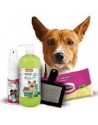Higiene para perros | Superpiensos