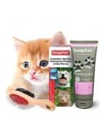 Higiene para gatos | Superpiensos