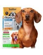 Antiparasitarios y repelentes para perro   SuperPiensos